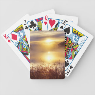 USA, Missouri, Kansas City Metro Area, Fleming Bicycle Playing Cards