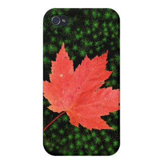 USA, Missouri, Mark Twain National Forest Cases For iPhone 4