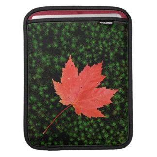 USA, Missouri, Mark Twain National Forest iPad Sleeve