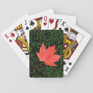 USA, Missouri, Mark Twain National Forest Poker Deck