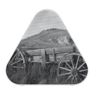 USA, Montana, Bannack State Park Old wagon made