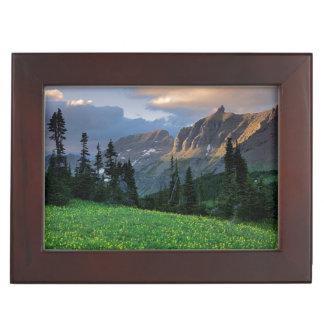 USA, Montana, Glacier National Park, Logan Pass Keepsake Box