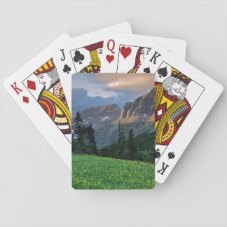USA, Montana, Glacier National Park, Logan Pass Playing Cards