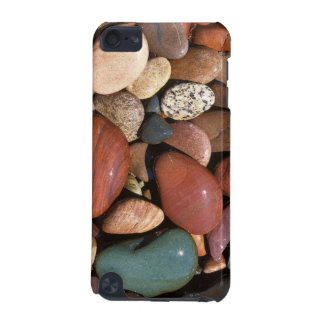 USA, Montana, Lolo National Forest, Clark Fork iPod Touch 5G Case