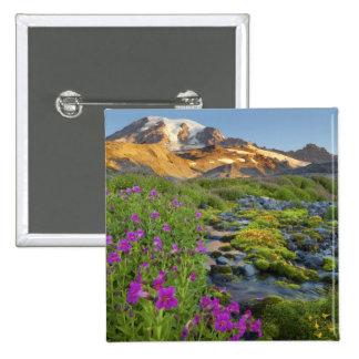 USA, Mt. Rainier National Park, Washington. 15 Cm Square Badge