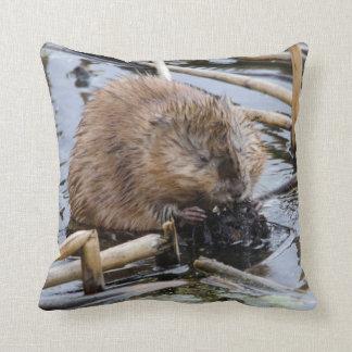 USA, Nebraska. Beaver Throw Pillow