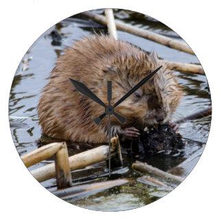 USA, Nebraska. Beaver Wallclocks