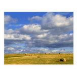 USA, Nebraska, Morrill County. Golden hay Postcard