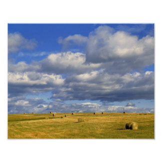 USA, Nebraska, Morrill County. Golden hay Poster