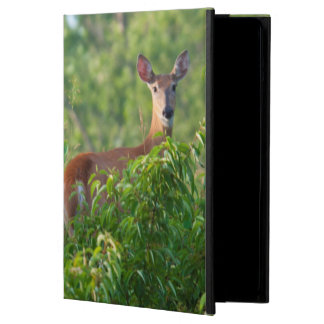 USA, Nebraska, White Tail Doe On Hill iPad Air Case