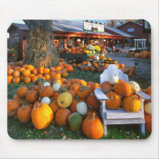 USA, New England, Maine, Wells. Autumn Display Mouse Pad