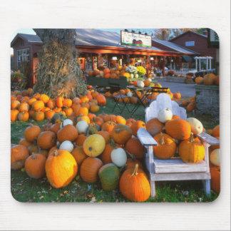 USA, New England, Maine, Wells. Autumn Display Mouse Pad