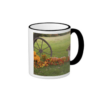 USA, New England, Massachusetts, Waltham, Gore Ringer Mug