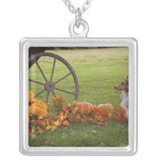 USA, New England, Massachusetts, Waltham, Gore Silver Plated Necklace