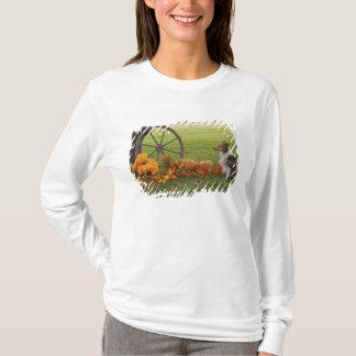 USA, New England, Massachusetts, Waltham, Gore T-Shirt