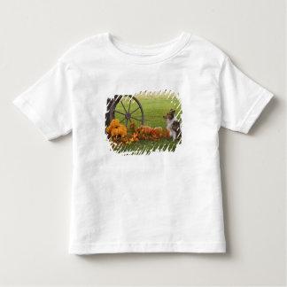USA, New England, Massachusetts, Waltham, Gore Toddler T-Shirt