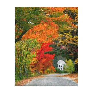 USA, New England, New Hampshire, Andover Canvas Prints