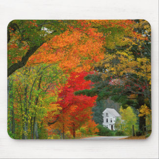 USA, New England, New Hampshire, Andover Mouse Mat