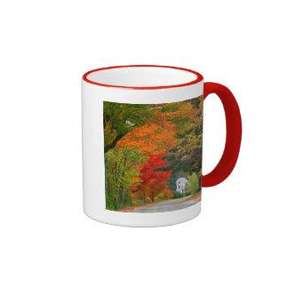 USA, New England, New Hampshire, Andover Mug