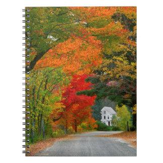 USA, New England, New Hampshire, Andover Note Books