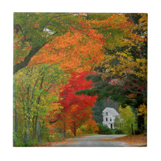 USA, New England, New Hampshire, Andover Small Square Tile