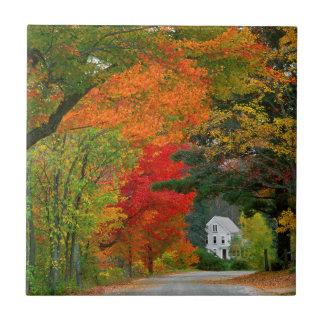 USA, New England, New Hampshire, Andover Tile