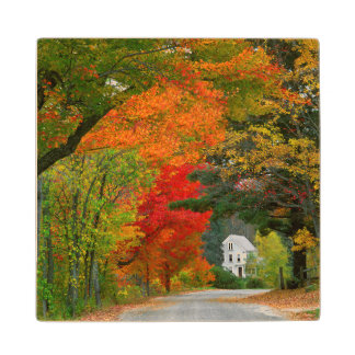USA, New England, New Hampshire, Andover Wood Coaster