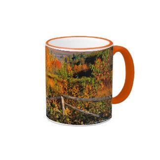 USA, New England, New Hampshire, Chocorua Mug
