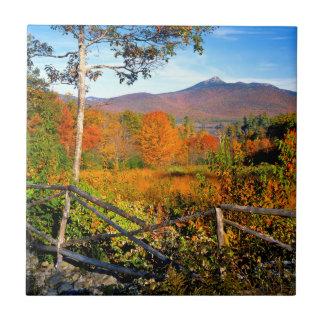 USA, New England, New Hampshire, Chocorua Small Square Tile