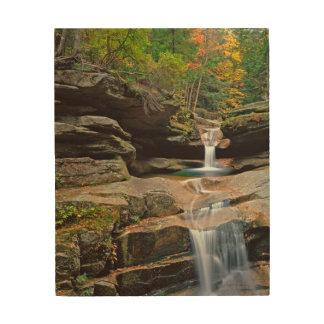 USA, New England, New Hampshire, White Mountains Wood Canvas