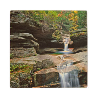 USA, New England, New Hampshire, White Mountains Wood Coaster