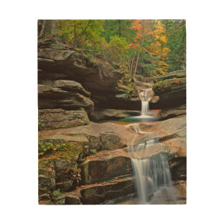 USA, New England, New Hampshire, White Mountains Wood Canvas