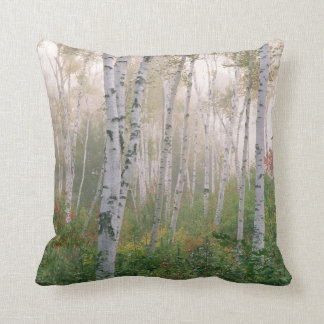 USA, New Hampshire. Birch trees in clearing fog Throw Cushions