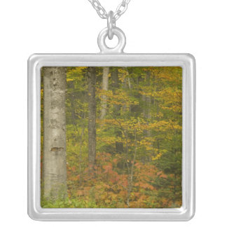 USA, New Hampshire, Livermore, White Mountain Square Pendant Necklace
