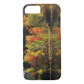 USA, New Hampshire, Moultonborough. Trees in iPhone 8/7 Case