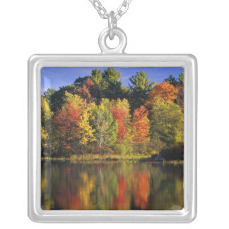 USA, New Hampshire, Moultonborough. Trees in Silver Plated Necklace