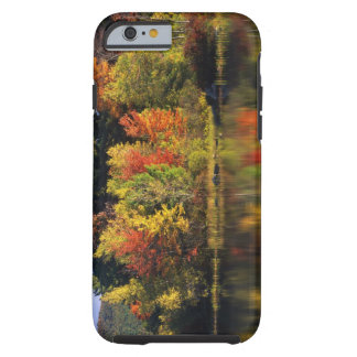 USA, New Hampshire, Moultonborough. Trees in Tough iPhone 6 Case