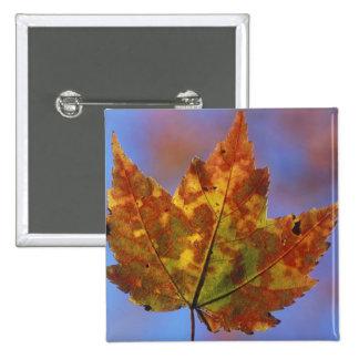 USA, New Hampshire, White Mountains, Franconia 15 Cm Square Badge