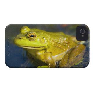 USA, New Jersey, Far Hills, Leonard J. Buck 6 iPhone 4 Case-Mate Case