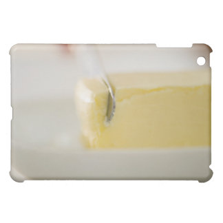 USA, New Jersey, Jersey City, Close-up view of iPad Mini Case