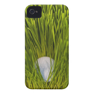 USA, New Jersey, Jersey City, Close-up view of iPhone 4 Case