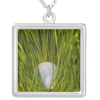 USA, New Jersey, Jersey City, Close-up view of Silver Plated Necklace