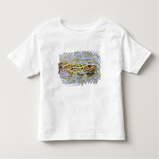 USA, New Jersey, Lakehurst, Lakehurst Naval Air Toddler T-Shirt