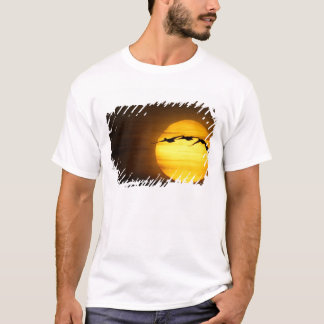 USA, New Mexico, Bosque del Apache National 2 T-Shirt