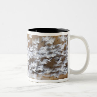 USA, New Mexico, Bosque del Apache National 3 Mug