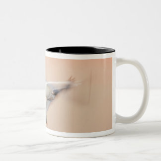 USA, New Mexico, Bosque del Apache National 3 Two-Tone Coffee Mug