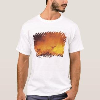 USA, New Mexico, Bosque del Apache National 7 T-Shirt