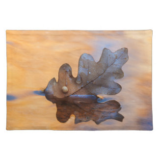 USA, New Mexico. Oak leaf in stream Placemat