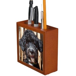 USA, New Mexico. Portuguese Water Dog Portrait Desk Organiser