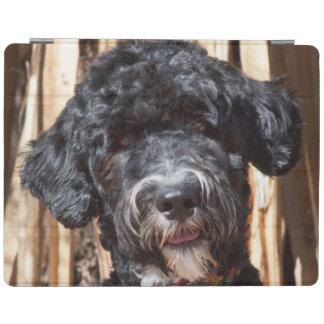 USA, New Mexico. Portuguese Water Dog Portrait iPad Cover